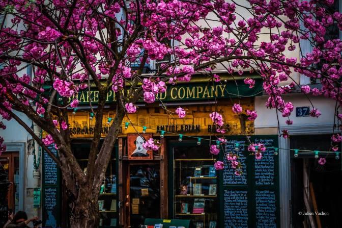 Paris au soleil Anglais